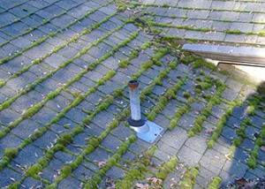 Moss Removal Sound Roof Care